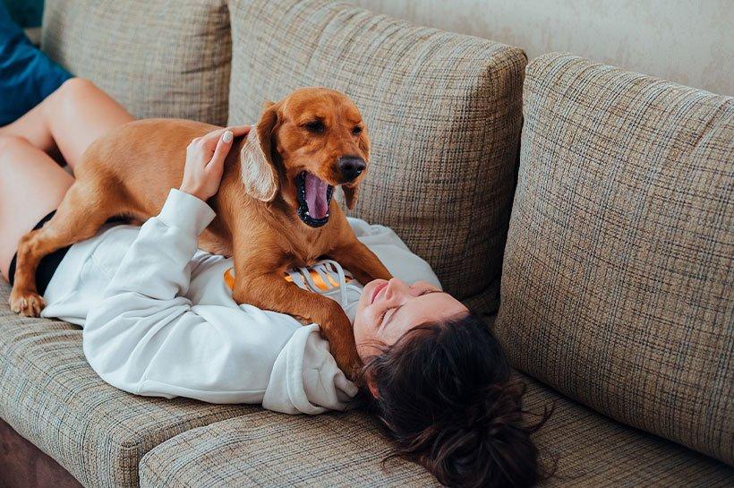 Une femme allongée sur le canapé en train de jouer avec son chien