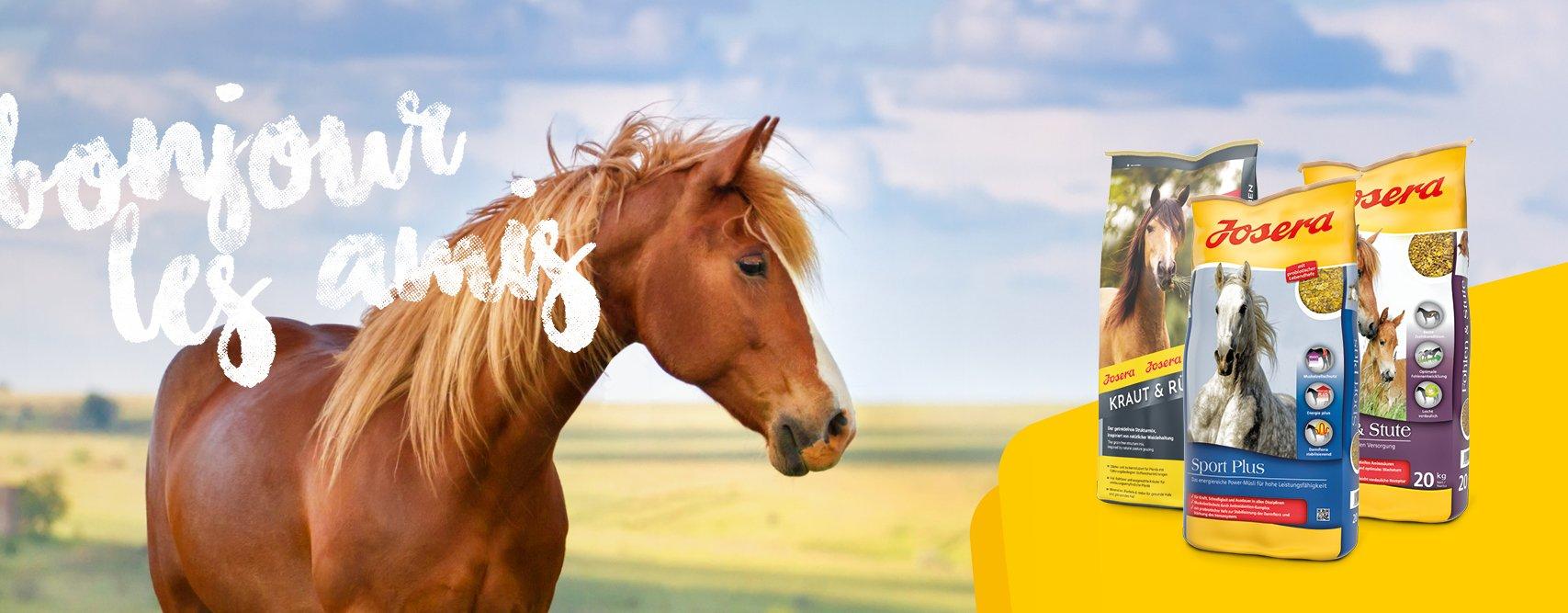 Josera croquette pour cheval