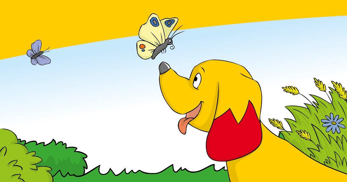 Vivre de manière écologiquement responsable avec son chien - ça peut être aussi simple que ça !
