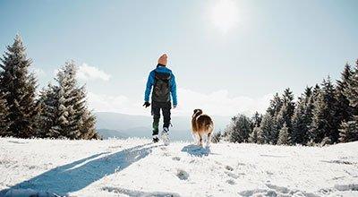 Pratique de la randonnée avec votre chien : partez avertis!